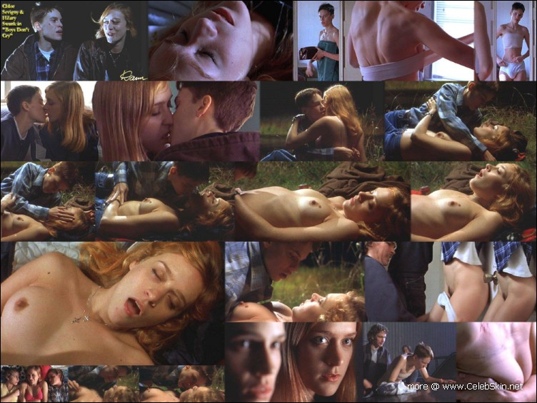 chloe sevigny brown bunny sex scene